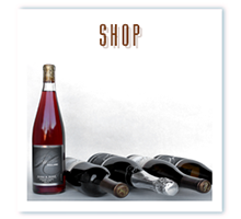 Shop Sigillo Wines